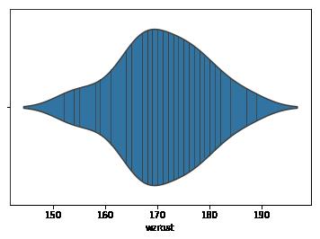wykres skrzypcowy, violin plot, stick